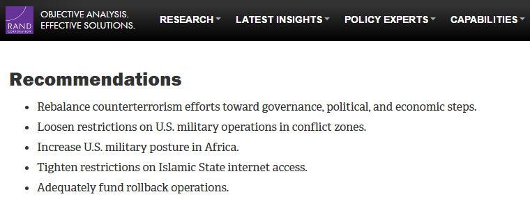 Empfehlungen der RAND Corporation zum Daesh - Bildquelle: Screenshot-Ausschnitt www.rand.org
