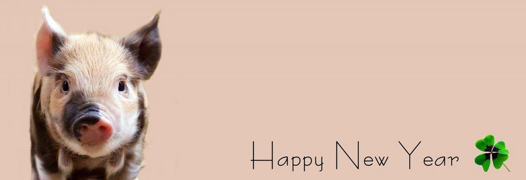 Gutes Neues 2018 - Bildquelle: Pixabay / pixel2013; CC0 Creative Commons