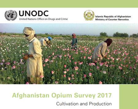 UNODC - Bildquelle: Screenshot-Ausschnitt UNODC-Dokument